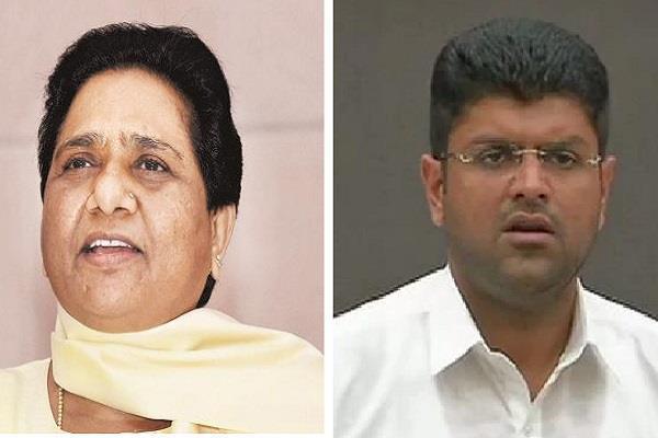 mayawati told bsp jjp alliance in haryana
