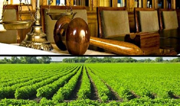 new agriculture law in punjab