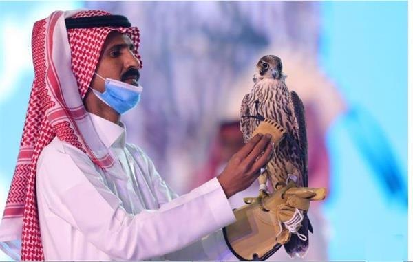 falcon sells for record breaking  170 000 in saudi arabia