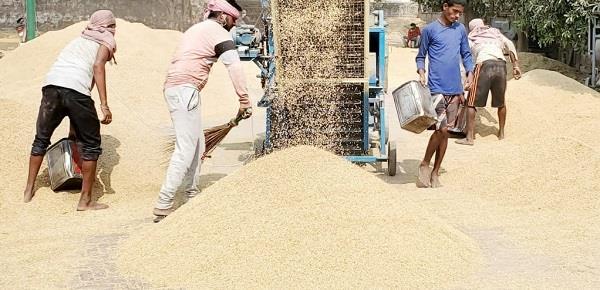 machhiwara market  procurement agency  crops  payment zero
