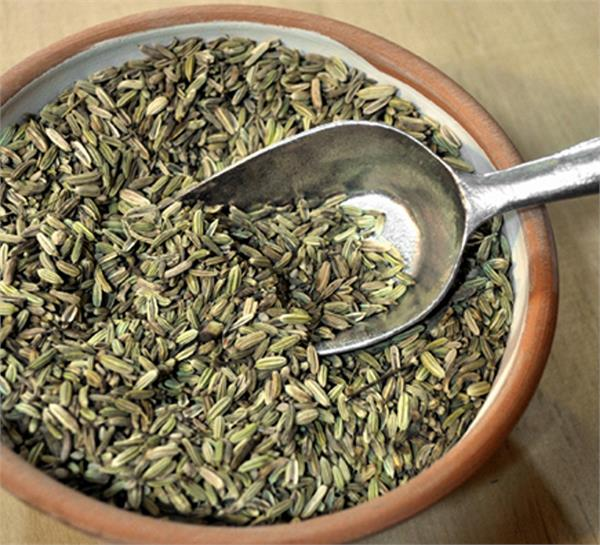 fennel is very beneficial for constipation cures other ailments of the body