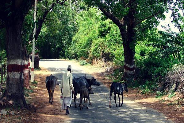 govt launches rs 10 000 crore ayushman sahakar yojana villagers facilities
