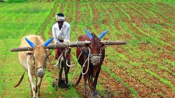 sikh organizations  agriculture bill