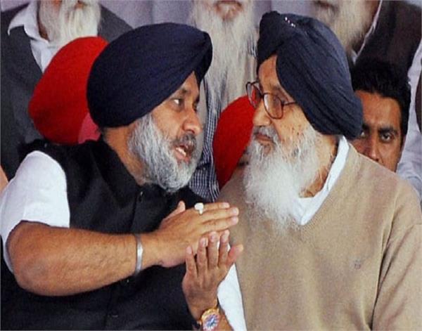 shiromani akali dal  high command  candidates