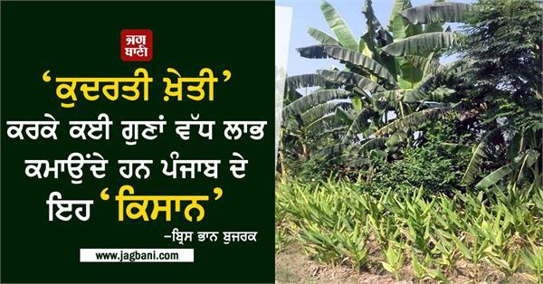 natural farming maximum profit punjab farmers
