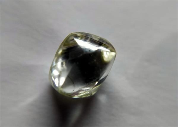 laborer gets precious diamond in panna