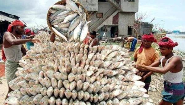 country closed fish market  curfew imposed in many areas