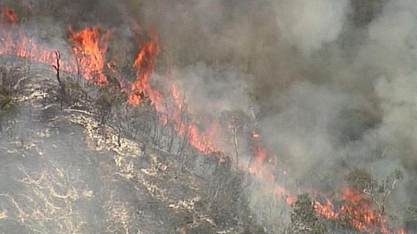 queensland  bushfire