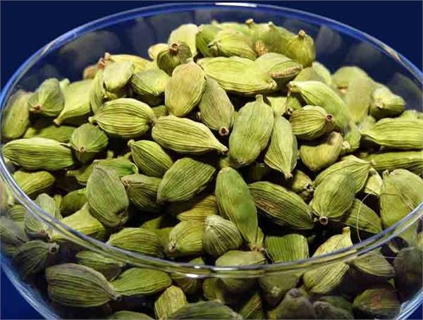 winter  diseases  small cardamom  water