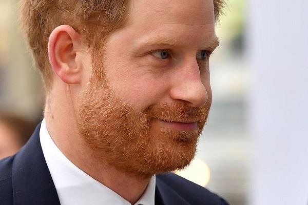 britain  prince harry