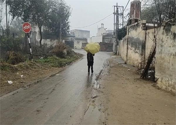 rain  nabha  farmers  vegetables