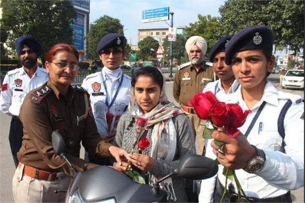 traffic rules  roses  flowers  road safety week
