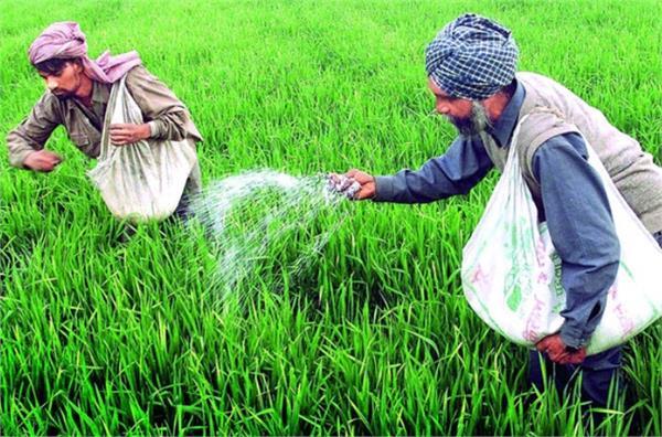 govt mulling revamping fertiliser subsidy