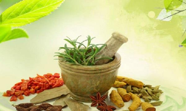 theft of   herbal property   and destruction with smuggling