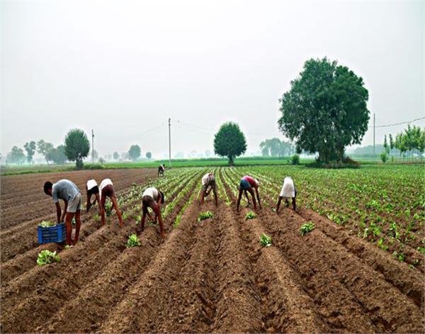 tarantaran  migrant farmers  overseas