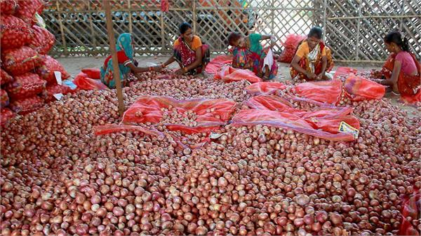 govt decides to lift the ban on export of onions