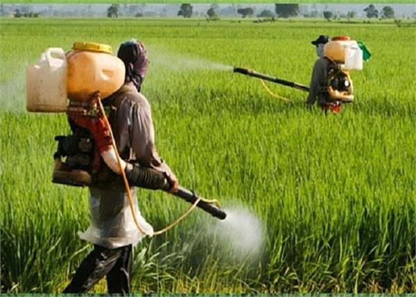 europe  dangerous pesticides  companies  farmers