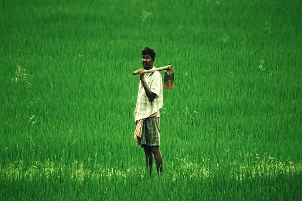 one year completion of pm farmer scheme