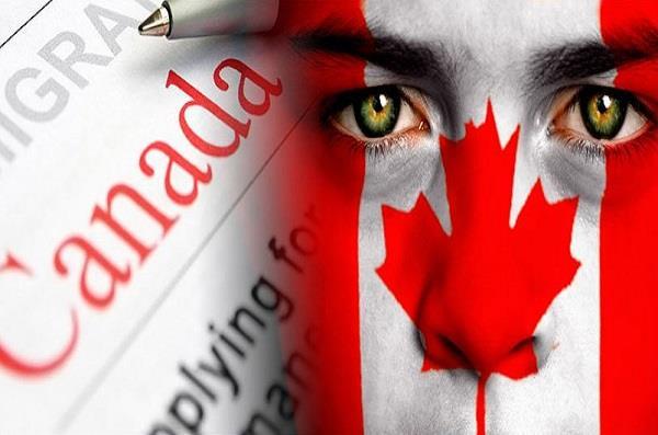 canada s covid 19 cases