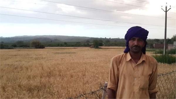 coronavirus farmers upset hoshiarpur