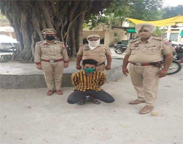 sultanpur lodhi  child  rape