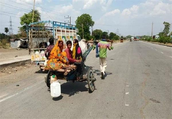 buses are closed  bullock carts stretching 28 km from mhow itself to indore