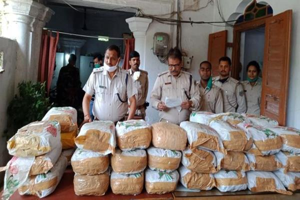 164 kg cannabis recovered from hazaribagh  two arrested