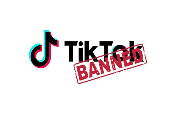 chinese mobile apps  tiktok  59 chinese apps  banned  government of india