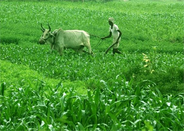 pm kisan samman nidhi scheme farmers accounts installment august