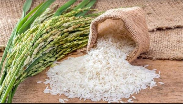 two years relief basmati exporter producer
