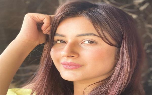shehnaaz gill reveals that she is not punjab ki katrina