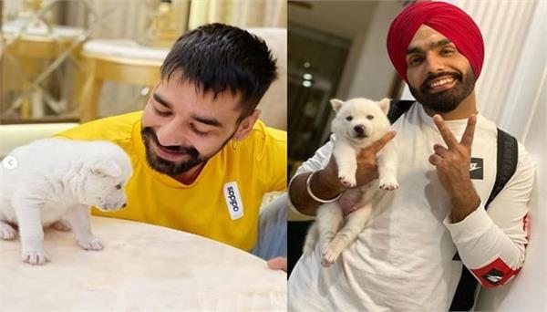 ammy virk shares first look of his pet   barfi   with fans