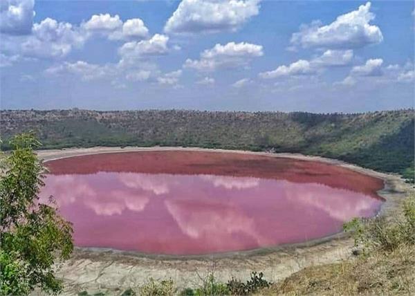 maharashtra lonar lake water pink scientist