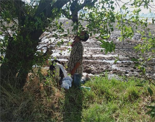 guru ka bagh  nri youth  trees  corpses