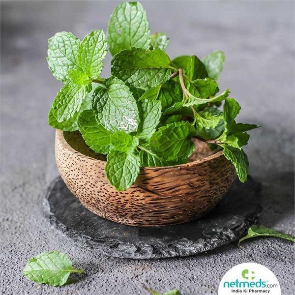 mint health benefits