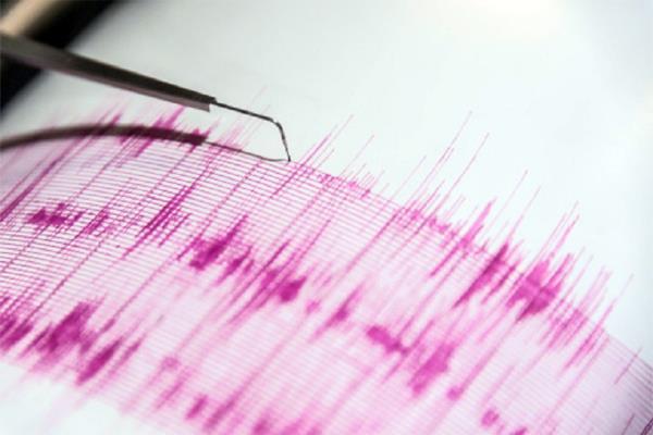 4 5 magnitude earthquake shakes ladakh