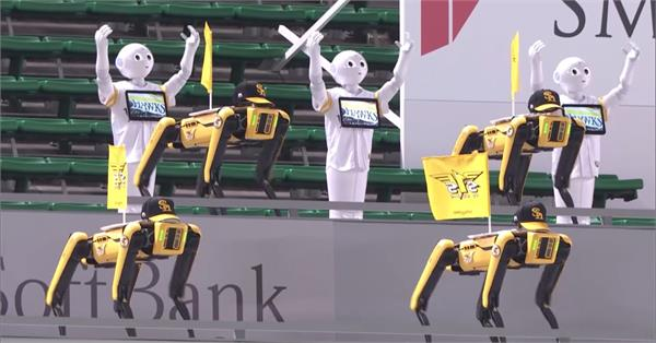 robot dance and cheered at a baseball game in japan see video