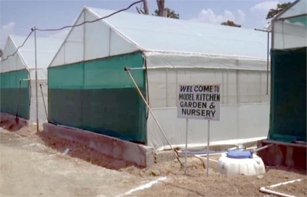 kashmir govt constructs new high tech poly houses to boost vegetable cultivation