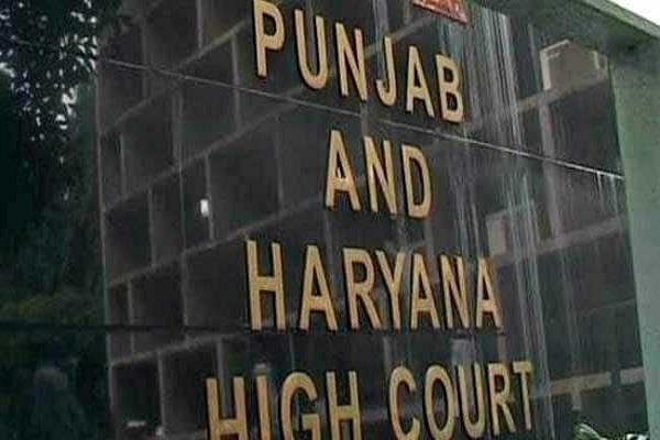 punjab   haryana highcourt