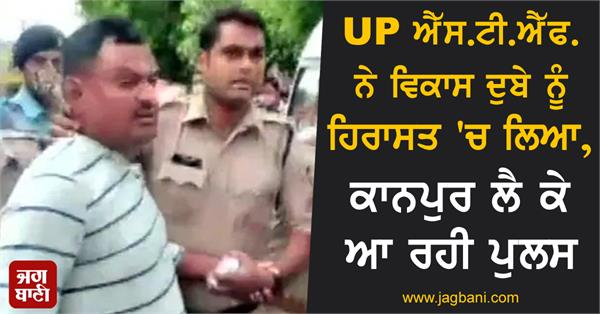 up stf detained vikas dubey police coming to kanpur