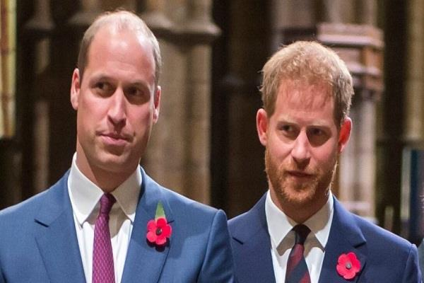 britain  william and prince harry