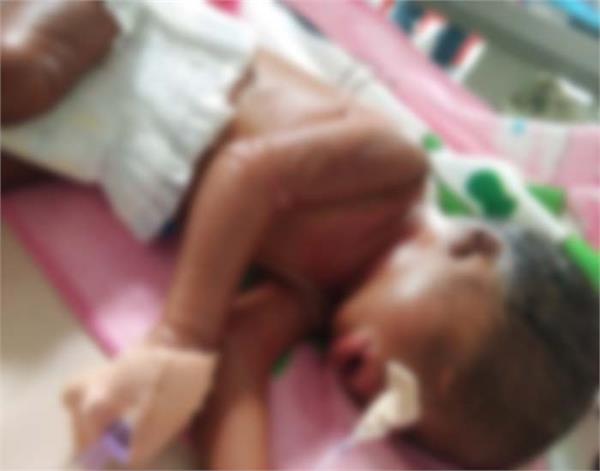 punjab plastic baby born colodian baby