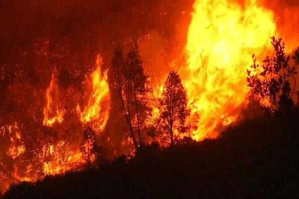 southern california forest fires evacuate 200 homes