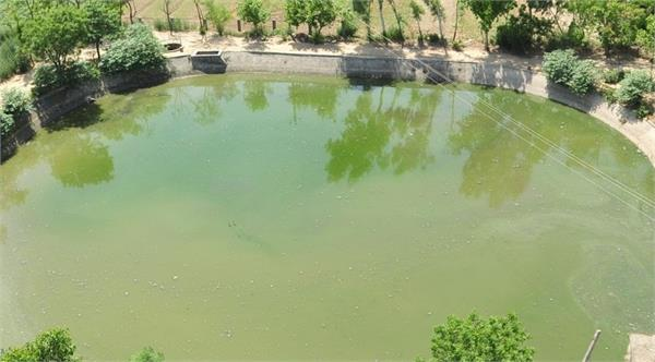55 ponds to be built under seachewal jalandhar