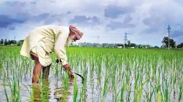 farmers   prosperity  key to india  s development