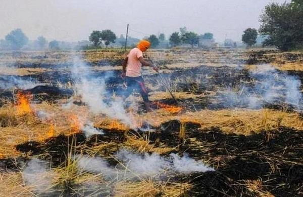 precautionary measures are required to prevent farmers