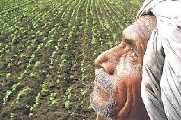 poor politics on farmers