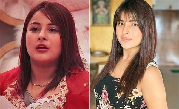 shehnaaz gill lose 12 kg weight in 6 months says people