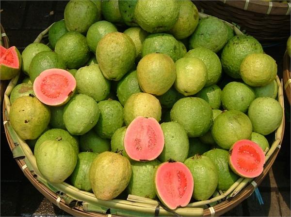 guava benefits nutrients body healthy