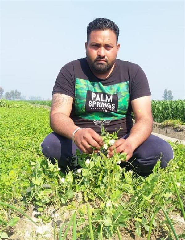 shahkot farmer sukhjinder singh kohar organic farming